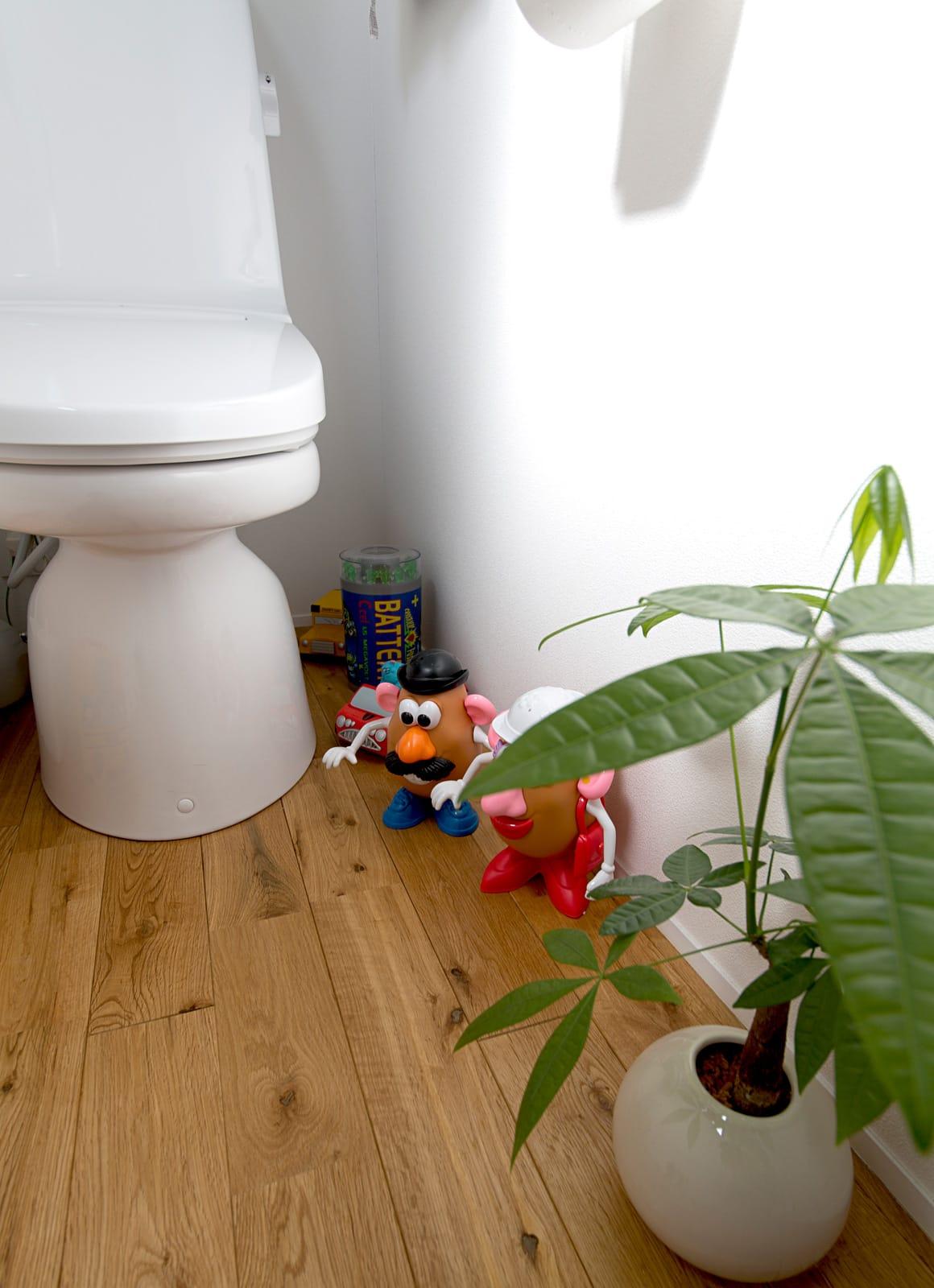 秘密基地のある家のトイレ2
