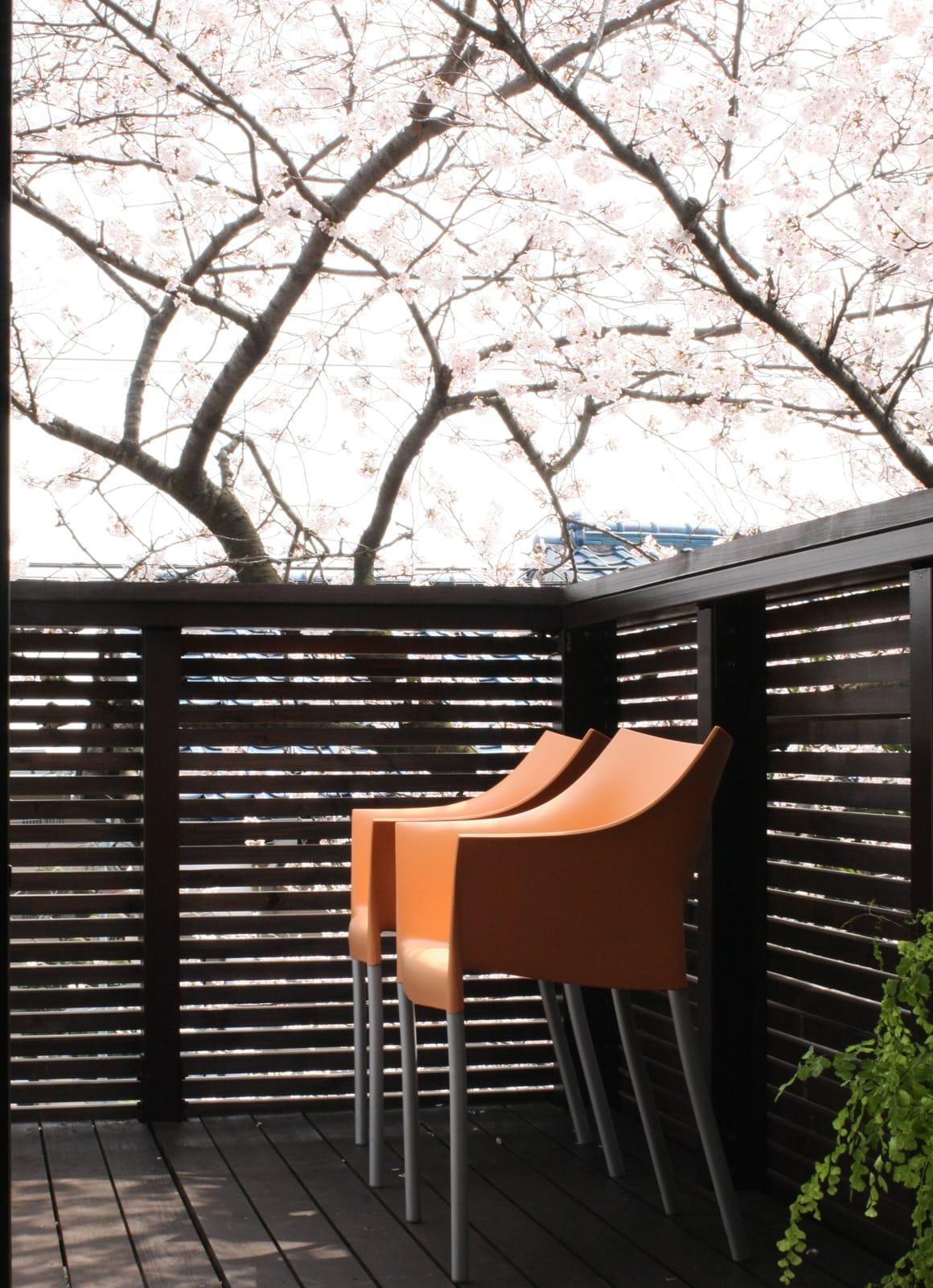 桜を眺める築40年の戸建住宅再生のこだわり1