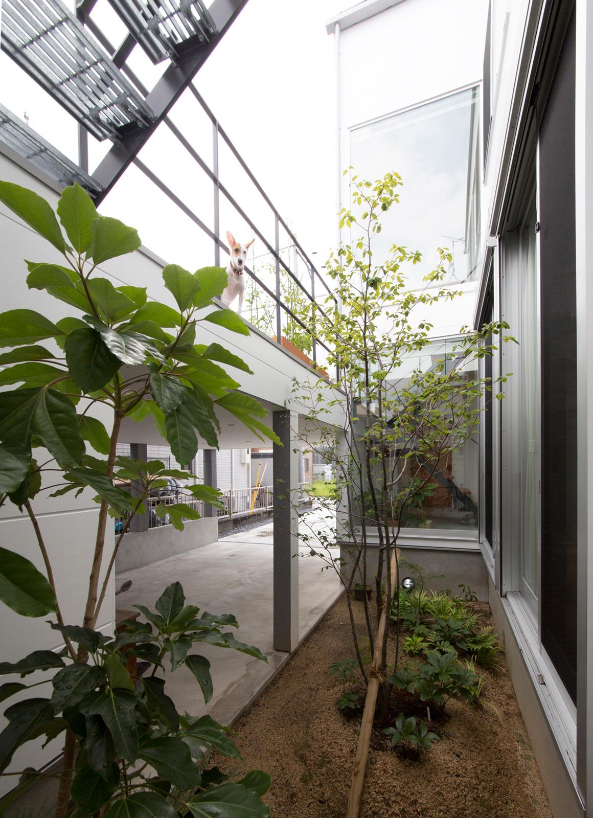 1.5階デッキのある家の中庭・インナーテラス1